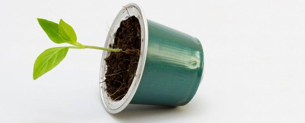 Lipton® et le recyclage